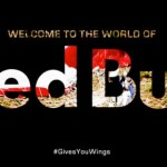 World of Red Bull 2013