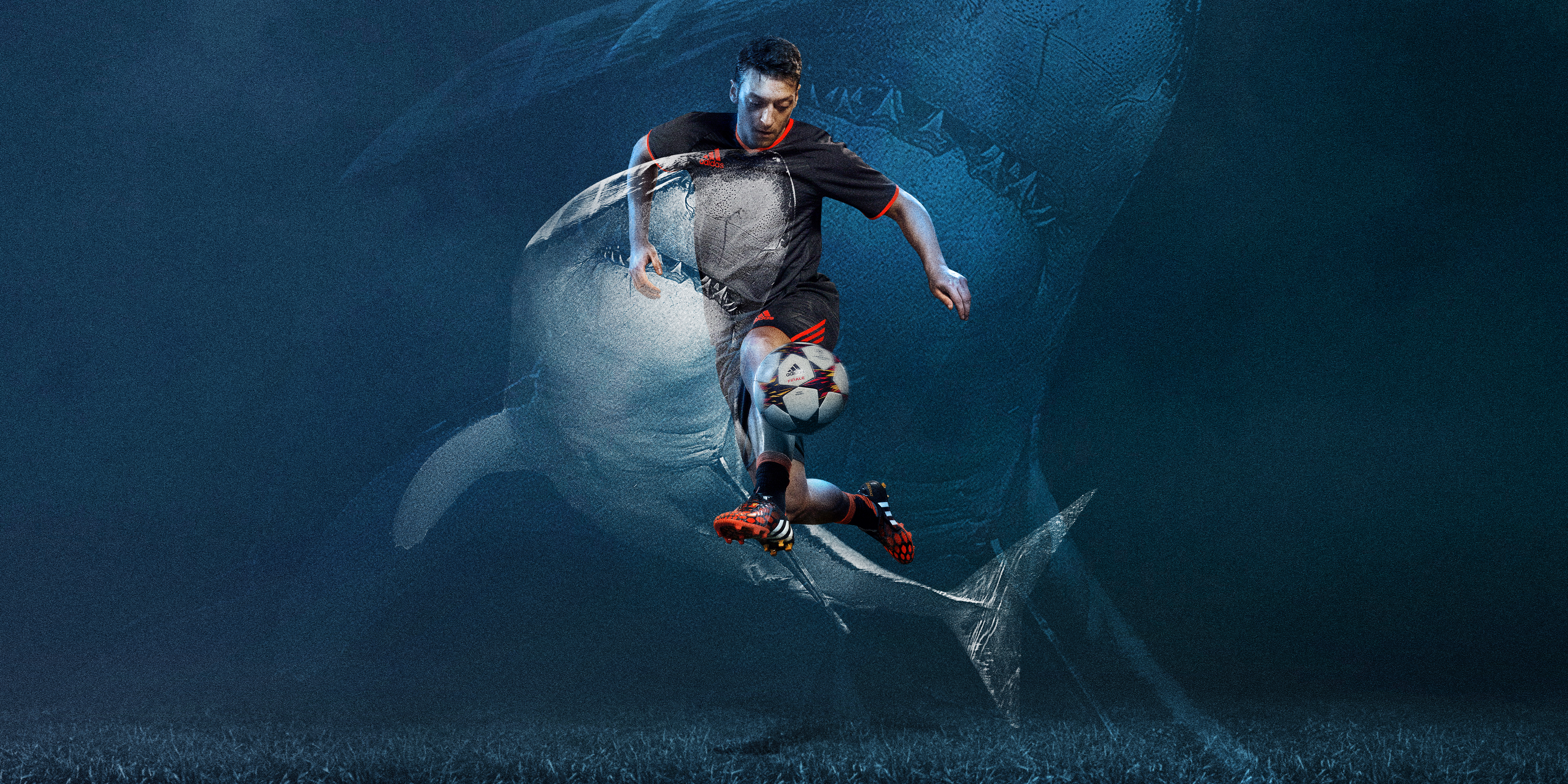 Pred_S2_Ozil_Shark_2x1