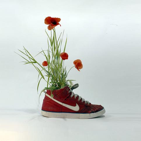 mr-plant-10