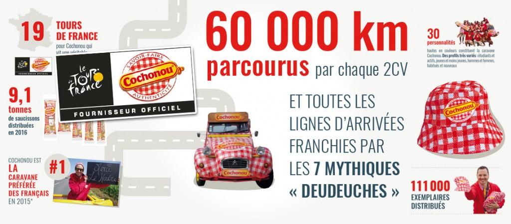 cochonou-infographie